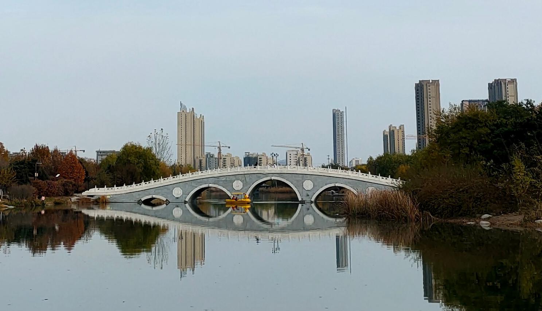 网友建议对青龙湖公园进行修复,权威回复来了!